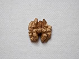 Gehirn, Brainteaser, Nuss