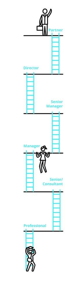 Karriereleiter