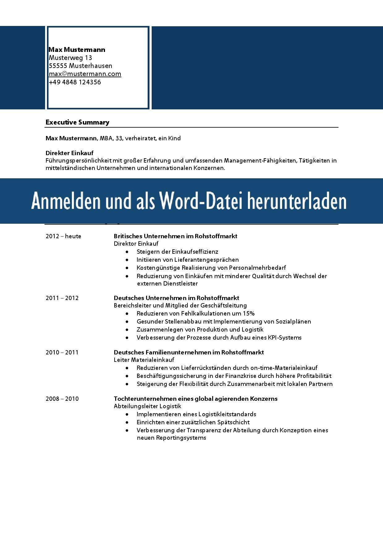 Kurzprofil Lebenslauf Vorlage Word Muster Vorlage Ch